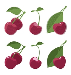 Set of whole cherry with leaves vector