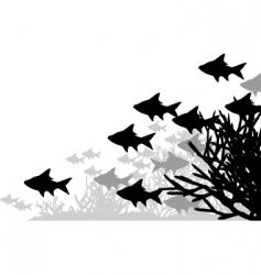 coral fish vector image vector image