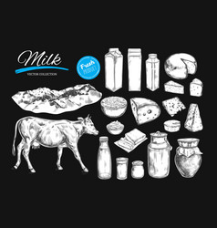 Dairy products collection vector