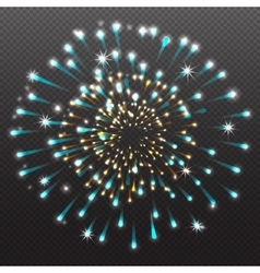 Set festive firework salute burst on transparent vector