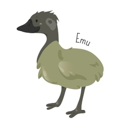 Emu isolated on white cartoon character vector