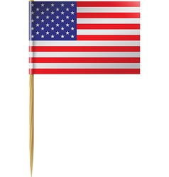 USA Flag Toothpick vector image vector image