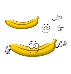 Cartoon isolated yellow banana fruit vector