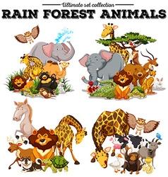 Different kind of rainforest animals vector