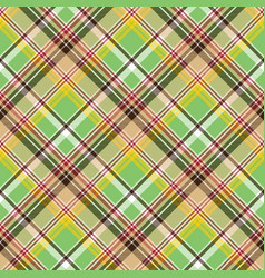 Fabric texture plaid green madras seamless pattern vector
