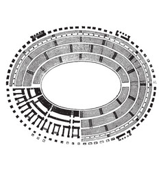 Ground plan of the colosseum representation of vector