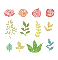 Hand drawn botany set of flowers and leaves vector