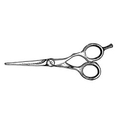 Hair-cutting shears vector