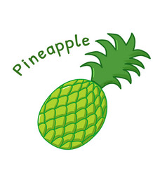 Isolated pineapple icon vector