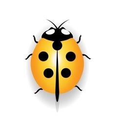 Ladybug icon yellow ladybug with five black dots vector image vector image