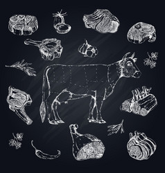 meat monochrome hand drawn set vector image
