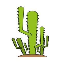 cactus flat vector image