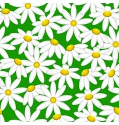 Camomile on a green background Pattern seamless vector image vector image
