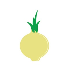 Onion flat icon vector image