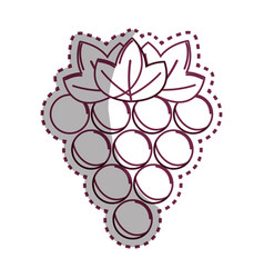 sticker silhouette grapes fruit icon image vector image vector image