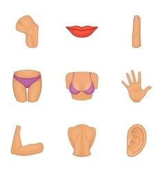 Women body part icons set cartoon style vector