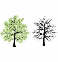 Spring and winter tree vector