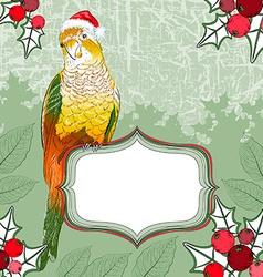 Festive parrot background vector