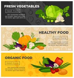 healthy fresh vegetables organic vegetarian vector image