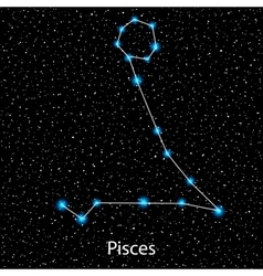 Pisces Zodiac sign bright stars vector image