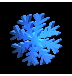Relief snowflake for various design vector
