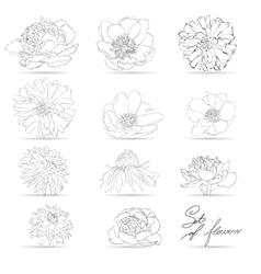 Set of flowers monochrome vector image