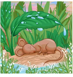sleep mouse vector image vector image