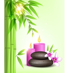 Spa stones and pink candles vector image