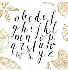 Hand drawn alphabet handwritten script vector