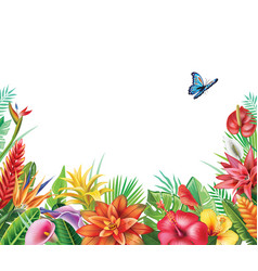Frame from tropical flowers vector