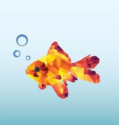 Abstract Goldfish vector image