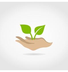 Leaf in hands2 vector