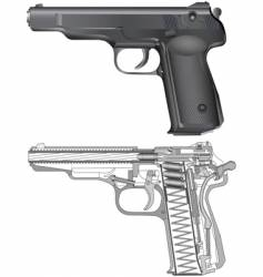 Cross section of a gun vector