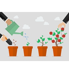 Planting tree process vector