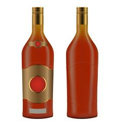 Cuban rum bottle vector image vector image