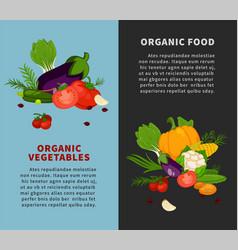 Healthy organic vegetables fresh healthy food vector