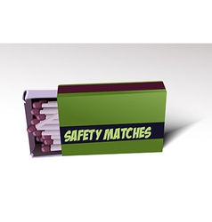 Safety matches vector