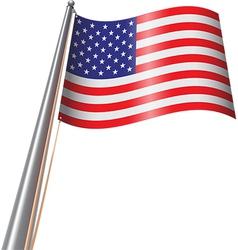 Us flag on pole vector