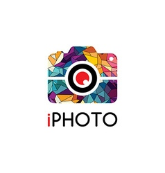 Abstract colorful triangle geometrical photography vector image vector image