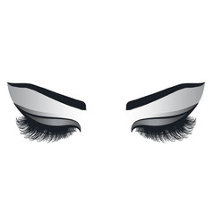 female eyes with long eyelashes vector image vector image
