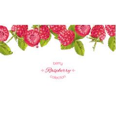 raspberry horizontal banner vector image vector image