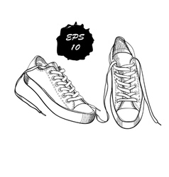 hand drawn graphic sport shoes vector image