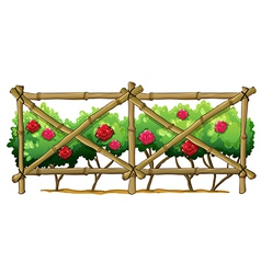 A bamboo fence with flowering plants vector