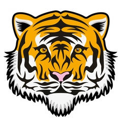 tiger face vector image