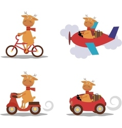 Set - cute deer with scarf on transport vector