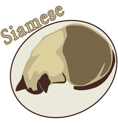 Siamese vector