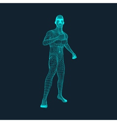 3d model of man human polygon body vector