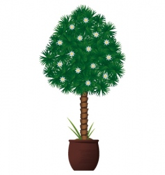 interior plant vector image