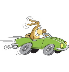 Cartoon dog driving a car vector
