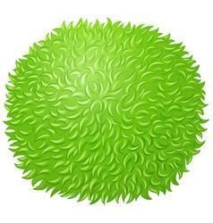 Green fluffy ball on white vector